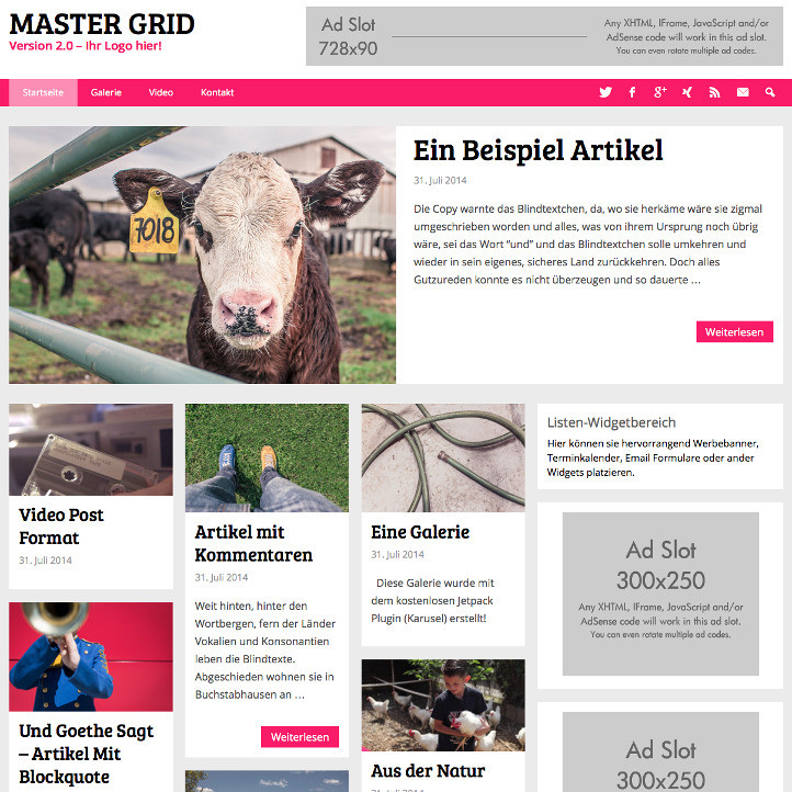 MasterGrid - WordPress Grid Theme